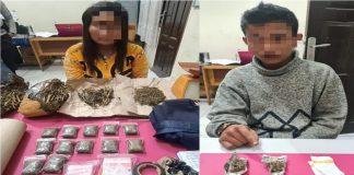 2 Orang Sindikat Jaringan Narkoba Ditangkap, Polisi Temukan Kiloan Gram Ganja di Rumah Kontrakan