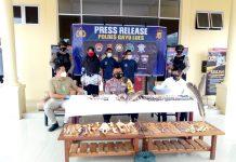 Ungkap Kasus Tindak Pidana Perdagangan Satwa Liar Dilindungi, Polres Gayo Lues Bekuk 2 Tersangka Dilokasi Berbeda