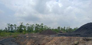 Kangkangi 'PP RI No.61 Tahun 2009' Pelabuhan Batubara Beroperasi di Tungkal Ulu Diduga Illegal, Diperparah Limbah Cemari Sungai