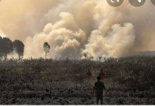 Polda Sumsel Sebar Maklumat Larangan Membakar, Cegah Karhutla
